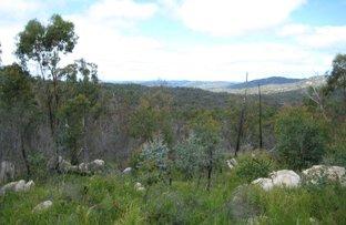 Picture of 2275 Torrington Road, Torrington NSW 2371