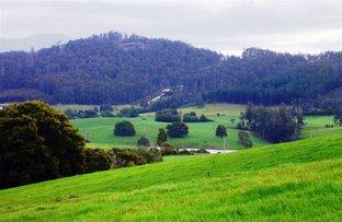 33842 Tasman Highway, Tulendeena TAS 7260