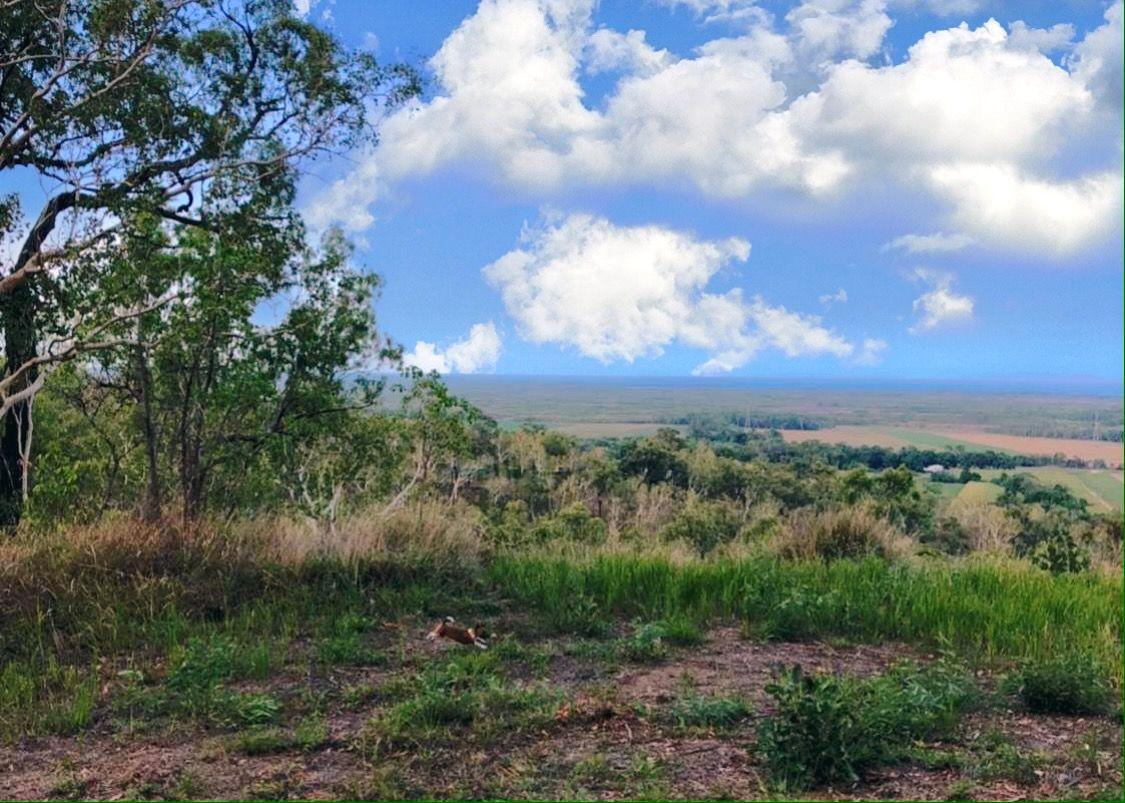Bruce Highway, Bambaroo QLD 4850, Image 2