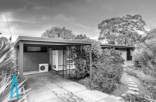 Picture of 15 Wendy Avenue, Valley View SA 5093