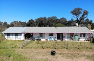 Picture of 3820 Murringo Road, Young NSW 2594