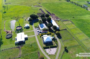 Picture of 7610 Mt Lindesay Highway, Beaudesert QLD 4285