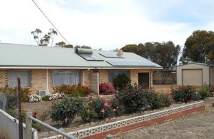 Picture of 36 Kojonup-Katanning Road, Kojonup WA 6395