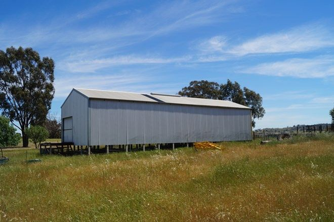 Picture of 905 Dookie Gowangardie Road, COSGROVE VIC 3631