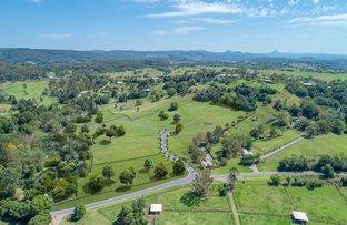 Picture of 198 Dulong Road, Dulong QLD 4560