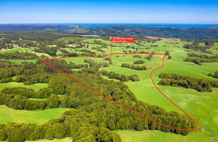 Picture of 110 Dehnerts Track, Beech Forest VIC 3237