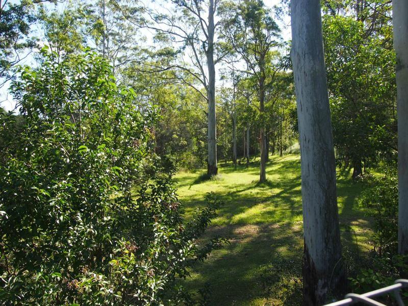 Wongawallan QLD 4210, Image 2