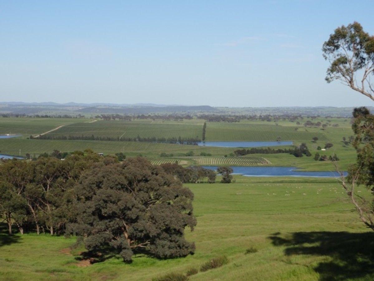 1864-1868 Euchareena Road, Molong NSW 2866, Image 1