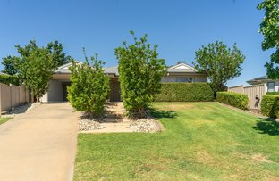 Picture of 10 Glenda Court, Robinvale VIC 3549