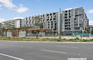 Picture of 308/1 Elouera Street, Braddon ACT 2612