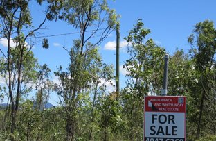 Picture of LOT 55 CARLISLE CRESCENT, Bloomsbury QLD 4799