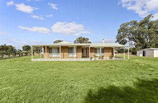 Picture of 47 Talbot Road, Clunes VIC 3370