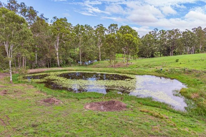 Picture of 1327 Anderleigh Rd, ANDERLEIGH QLD 4570