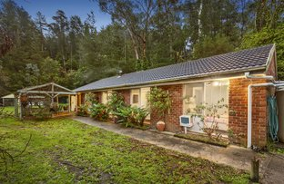 Picture of 3 Enfield Avenue, Park Orchards VIC 3114