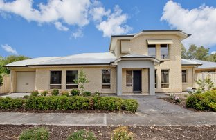 Picture of 1A Salrak Avenue, Marion SA 5043