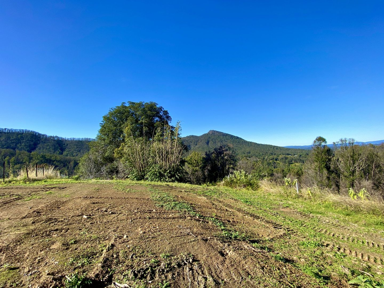 2148 Comboyne Road, Killabakh NSW 2429, Image 0