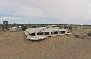 Picture of 177 Riverside Dr, Narrabri NSW 2390