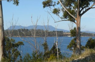 Picture of 89 Barton Avenue, Triabunna TAS 7190