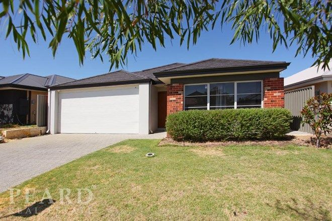 Picture of 48 Wycliffe Turn, PIARA WATERS WA 6112
