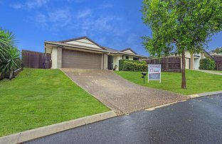 Picture of 4 Currawong Crescent, Upper Coomera QLD 4209