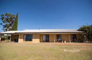 Picture of 187 Cowra Avenue Ext, Irymple VIC 3498