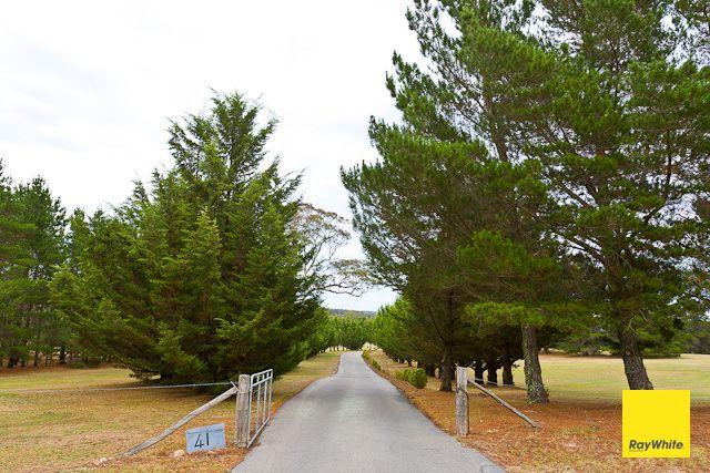 41 Merino Vale Drive, Wamboin NSW 2620, Image 1