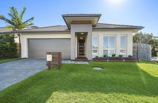 31 Quoll Circuit, North Lakes QLD 4509