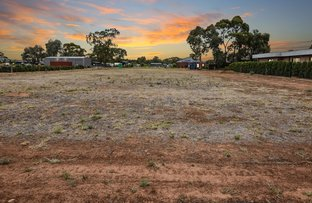 Picture of 15 Menzies Road, Echuca VIC 3564