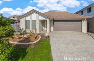 16 Hartley Crescent, North Lakes QLD 4509