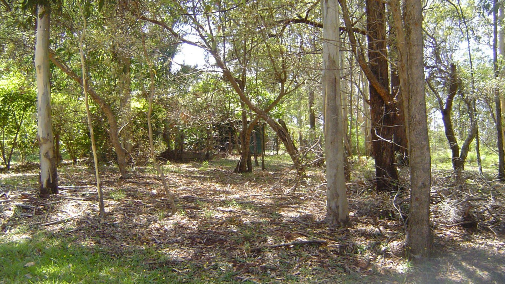 14 Darling Street, Russell Island QLD 4184, Image 2