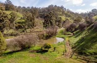 Picture of 209 HOLLANDS CREEK ROAD, Cudlee Creek SA 5232