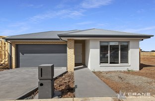 Picture of 12 Medlar Avenue, Manor Lakes VIC 3024