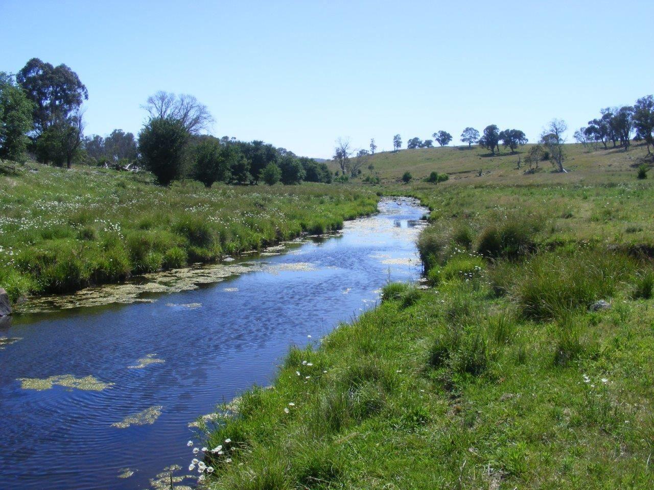 Fletchers'/. Mt Mitchell Road, Glencoe NSW 2365, Image 0