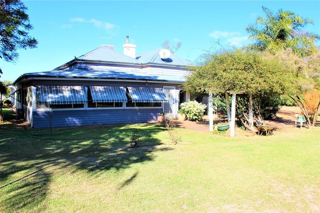 Picture of 'Woodbine' Cathundral Rd, TRANGIE NSW 2823