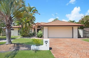3 Feathertail Court, Tewantin QLD 4565