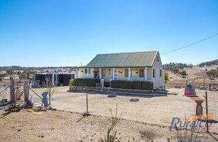 Picture of Echo Springs 4454 Oxley Highway, Bendemeer NSW 2355