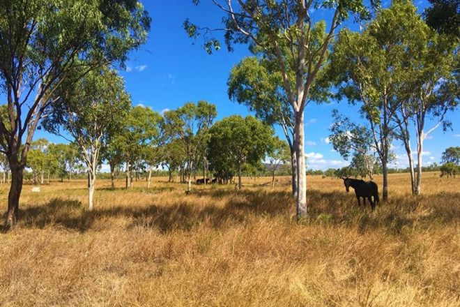 Picture of 213 Nine Mile Road, MARLBOROUGH QLD 4705