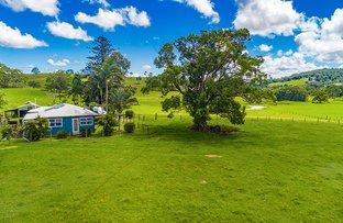 Picture of 990 Friday Hut Road, Binna Burra NSW 2479
