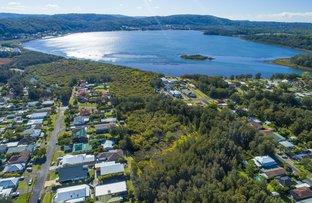 Tidal Shoals, Davistown NSW 2251