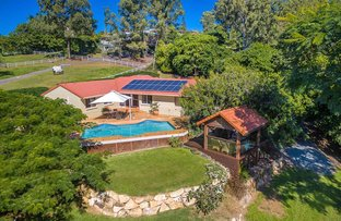Picture of 37 Veronica Drive, Tallai QLD 4213