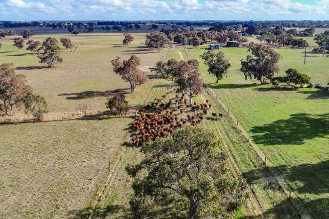 Picture of 1591 Lucindale Road, SPENCE SA 5271