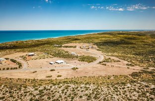 Picture of 56 African Reef Boulevard, Greenough WA 6532