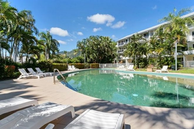 Picture of 319 Red Cowrie/305-341 Coral Coast Drive, PALM COVE QLD 4879