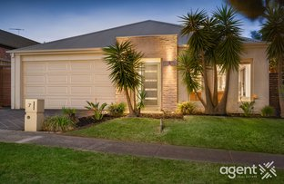 Picture of 7 Belmont Road, Berwick VIC 3806