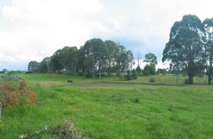 Picture of Catherine Field NSW 2557