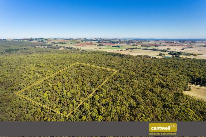 Picture of 360 Long Swamp Road, MOLLONGGHIP VIC 3352