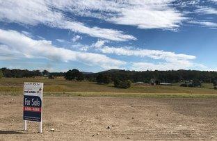 Lot 19 Beechwood Meadows, Beechwood NSW 2446