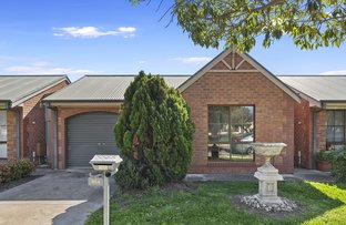 Picture of 2/66A Birdwood Terrace, North Plympton SA 5037