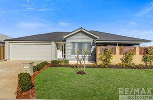 Picture of 53 Roccella Loop, Ashby WA 6065