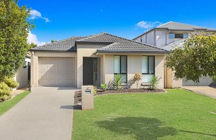 Picture of 47 O'Reilly Dve, Caloundra West QLD 4551